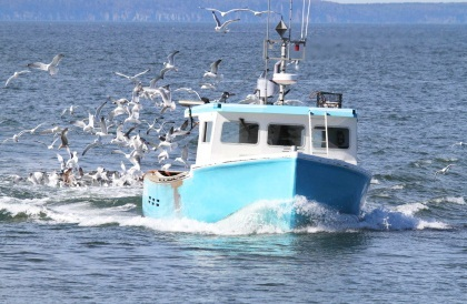 Image of a fishing boat